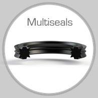 multiseals